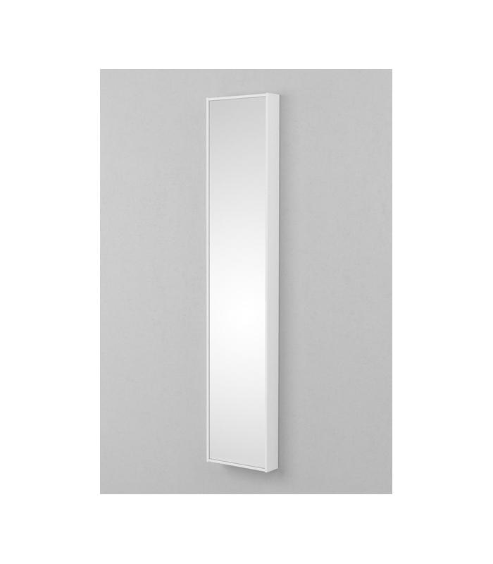 spegel med förvaring